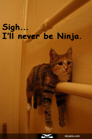 Sigh... I'll never be Ninja. Funny animal quotes, Funny