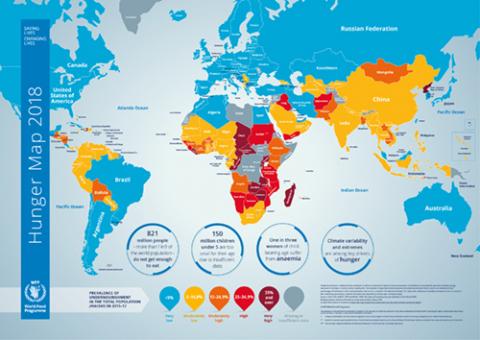 2018 Hunger Map World Food Programme