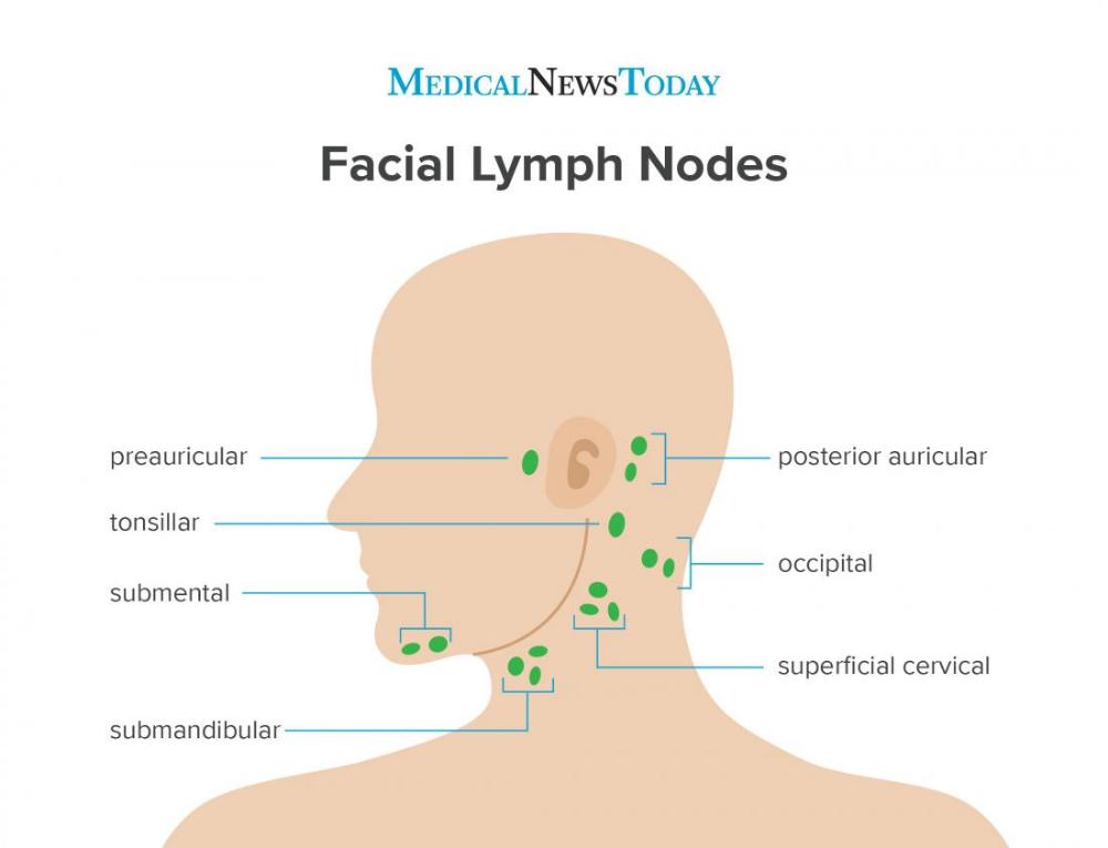 17++ Lymphatic swelling in neck ideas in 2021