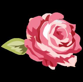 Pink Roses Ilustrasi Mawar Ilustrasi Digital