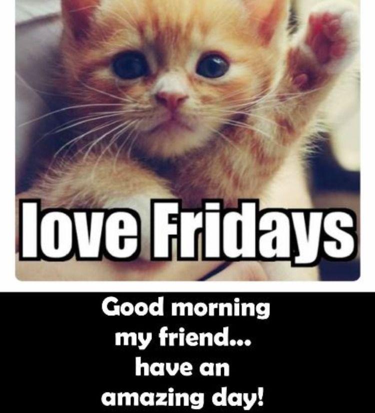 Positive Friday Morning Memes Good Morning Friday Morning Memes Friday Meme
