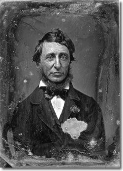 Henry David Thoreau Civil Disobedience Walden Henry David Thoreau Thoreau 25th Quotes