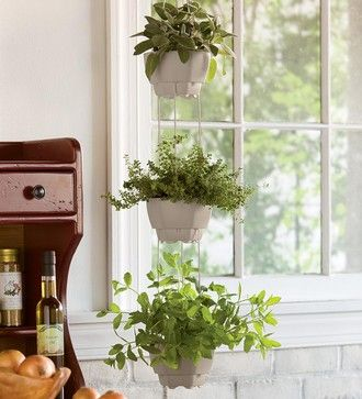3 Pot Self Watering Hanging Herb Planter Contemporary Indoor Pots And Planters This Would Be Great For The Kitchen