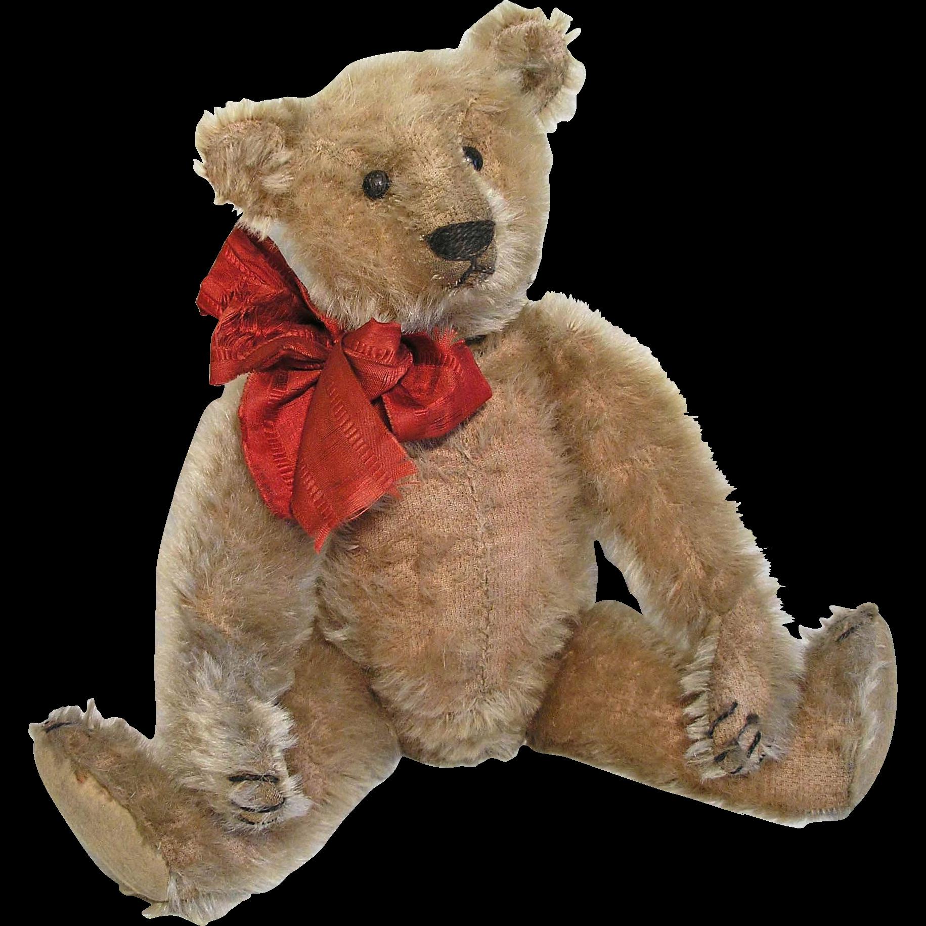 Adorable 13 Antique 1908 10 German Steiff Teddy Bear Teddy Bear Mohair Teddy Bear Teddy