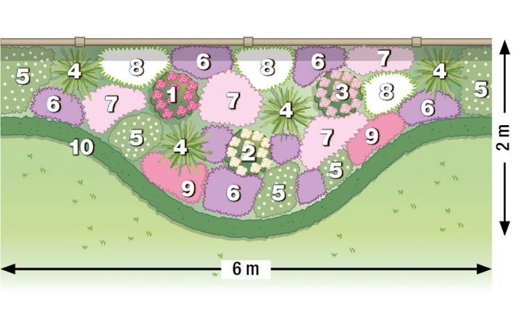 zum nachpflanzen rosen und stauden gekonnt kombiniert garten pinterest jardins. Black Bedroom Furniture Sets. Home Design Ideas