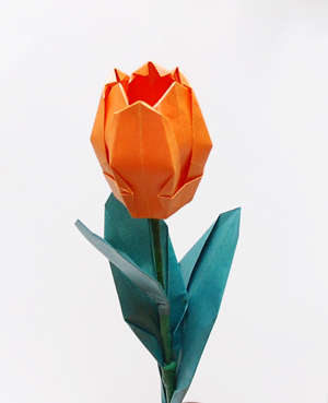 How to Make an Origami Tulip Flower & Stem | 369x300