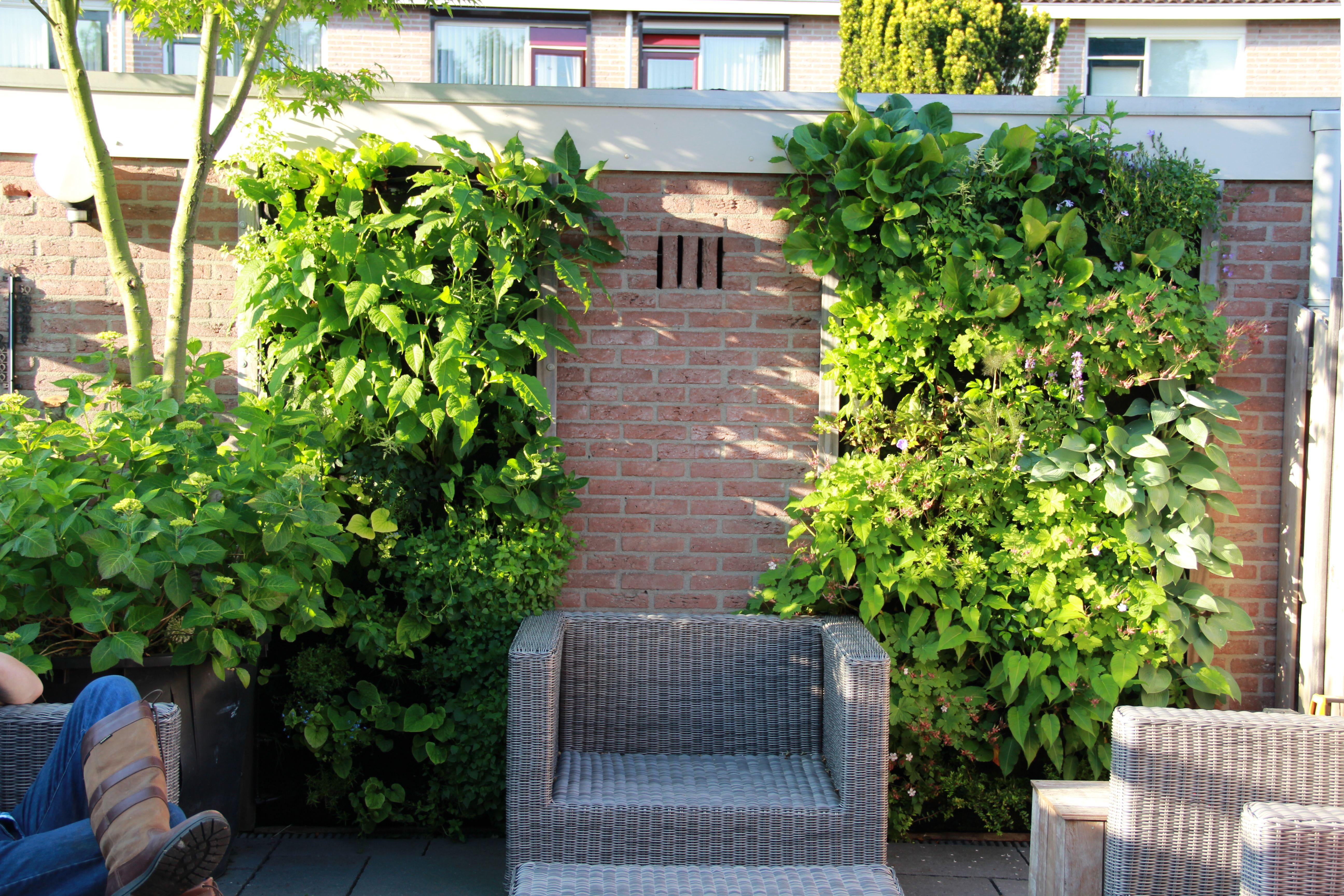 Tuin idee de vertiplant single verticaal tuinieren vertiplant