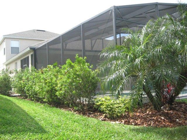 Landscaping Around Pool Enclosure Landscaping Around Pool Tropical Landscaping Florida Landscaping