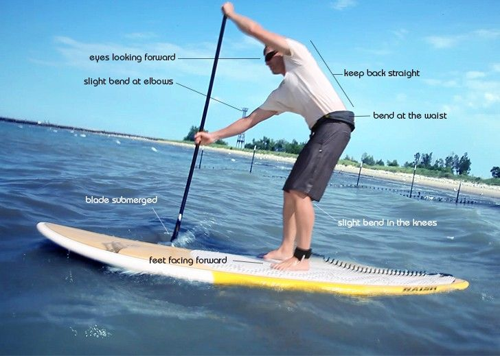 A beginners introduction on how to stand up paddle board. Everything you  need to know to get out and have fun on the water. cb05e128d545