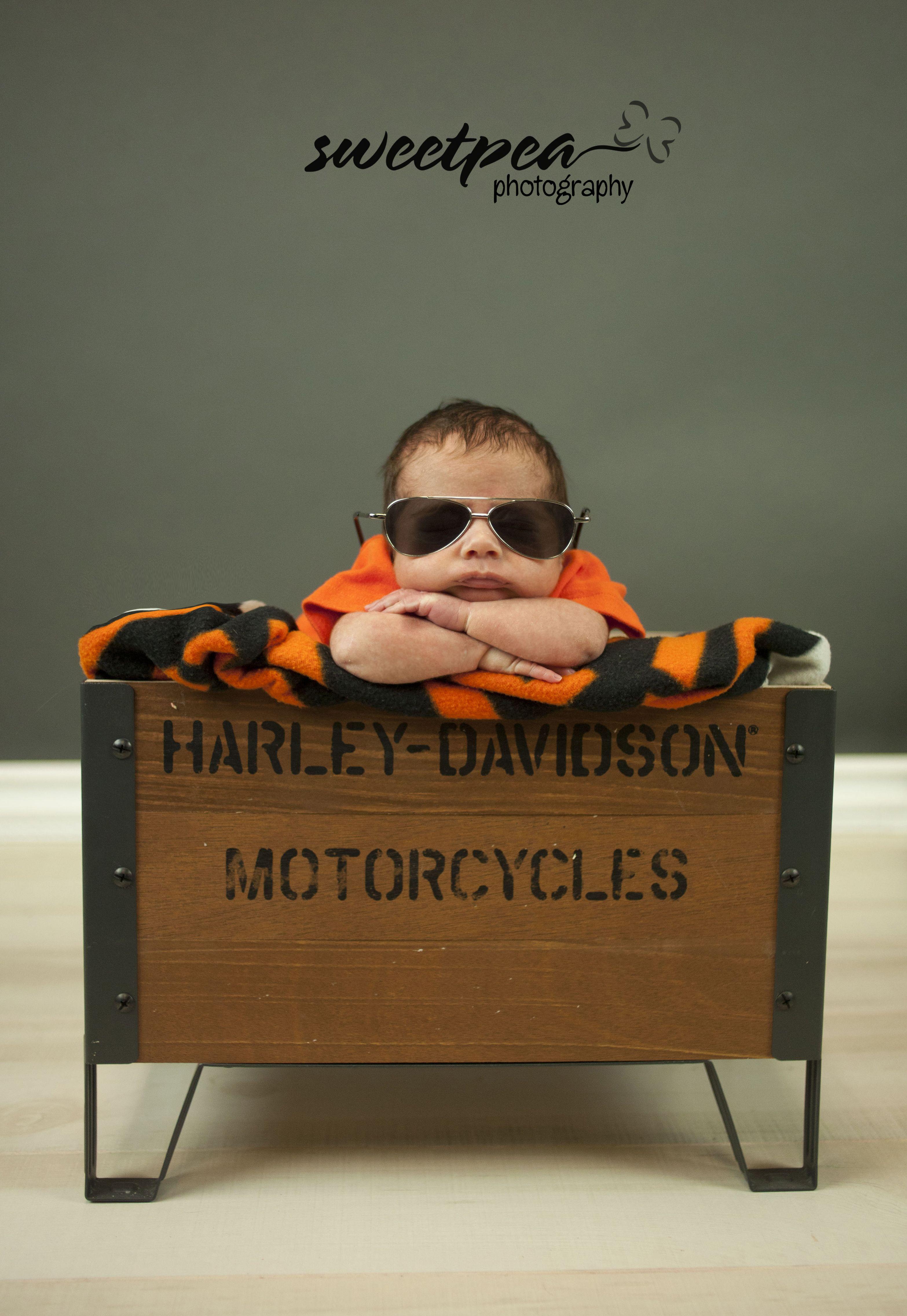 Harley Davidson newborn pose