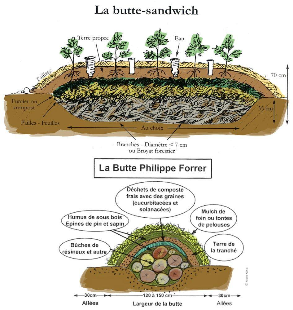 A y est j 39 ai commenc la construction d 39 une butte for Creer une butte permaculture