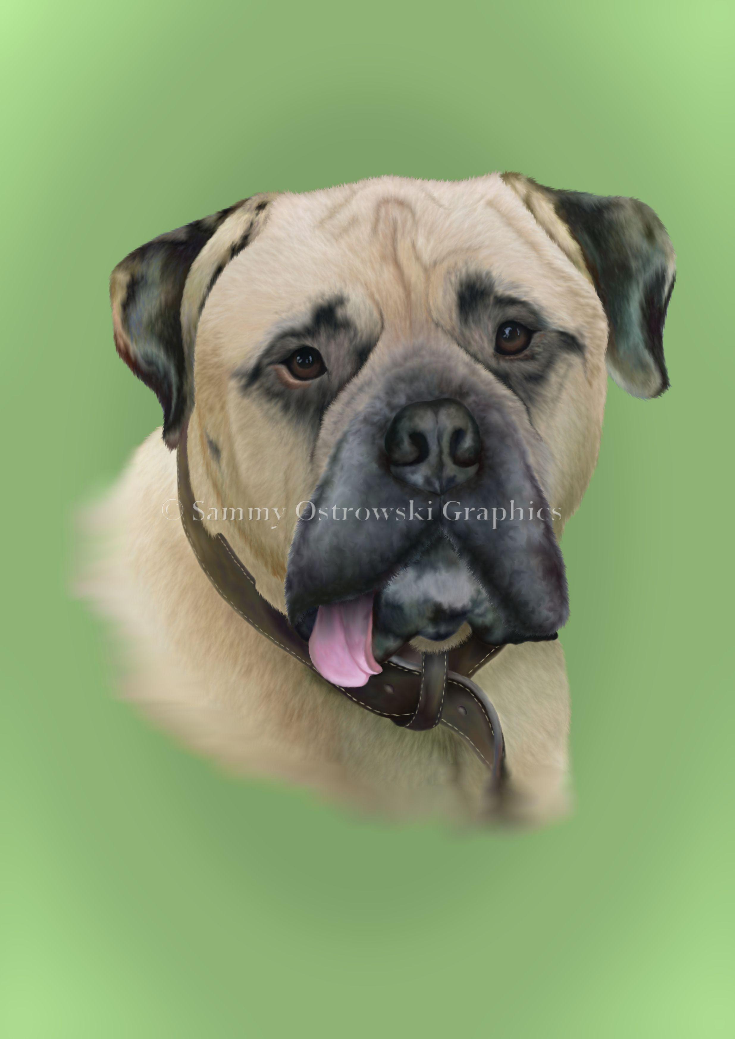 Sabre- English Bull Mastiff. Digital Illustration.
