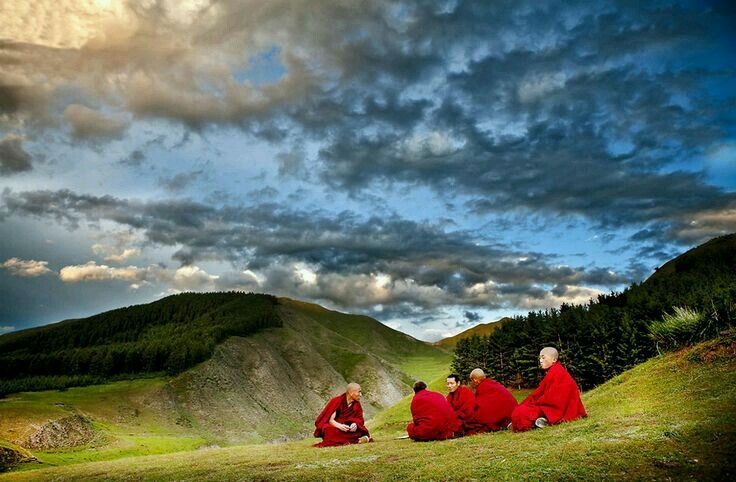 Pin by LovePeaceHarmony🌸 on Buddhist Monks (With images ...