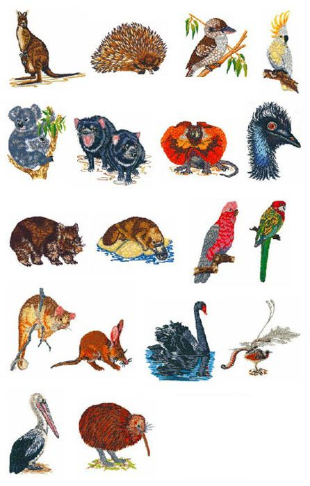 27573 Brother Sa346 No 46 Australian Animals Embroidery Design Card Jpg 446 700 Australian Animals Animal Embroidery Designs Australian Animals List