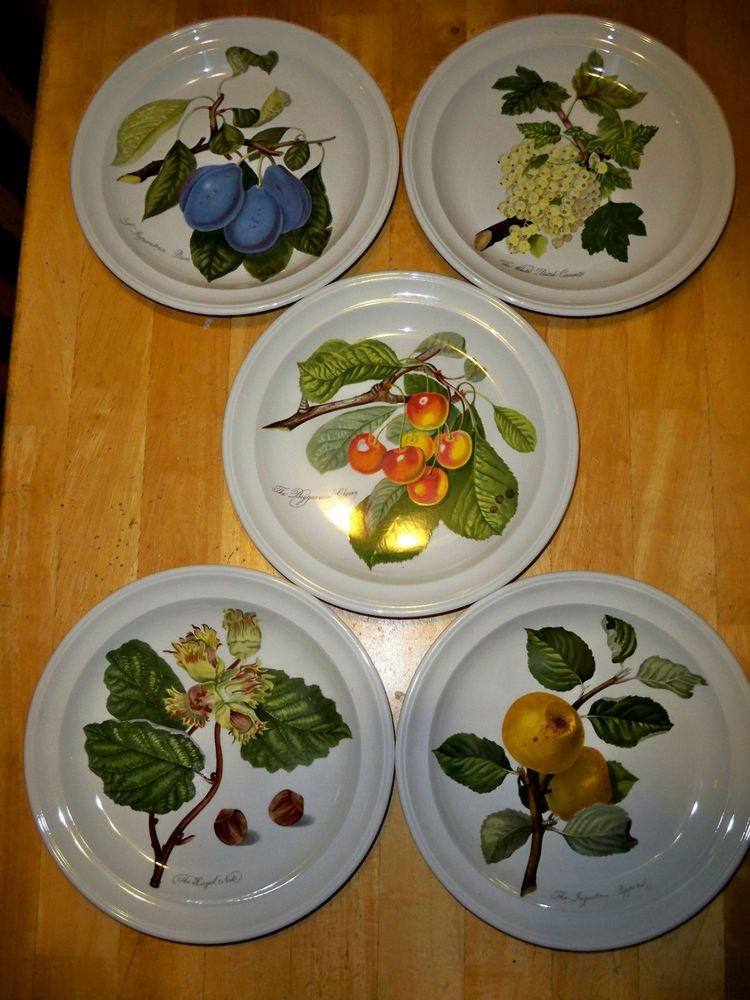 SET OF 5 PORTMEIRION POMONA BOTANICAL SALAD PLATES & SET OF 5 PORTMEIRION POMONA SALAD PLATES by Portmeirion - all older ...