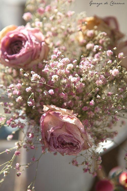 Fleurs Fanées, Du Temps, Tout Le, La Forme, Couronnes, Aimer, Couleurs,  Bouquets De Fleurs, Roses Des Jardins Anglais