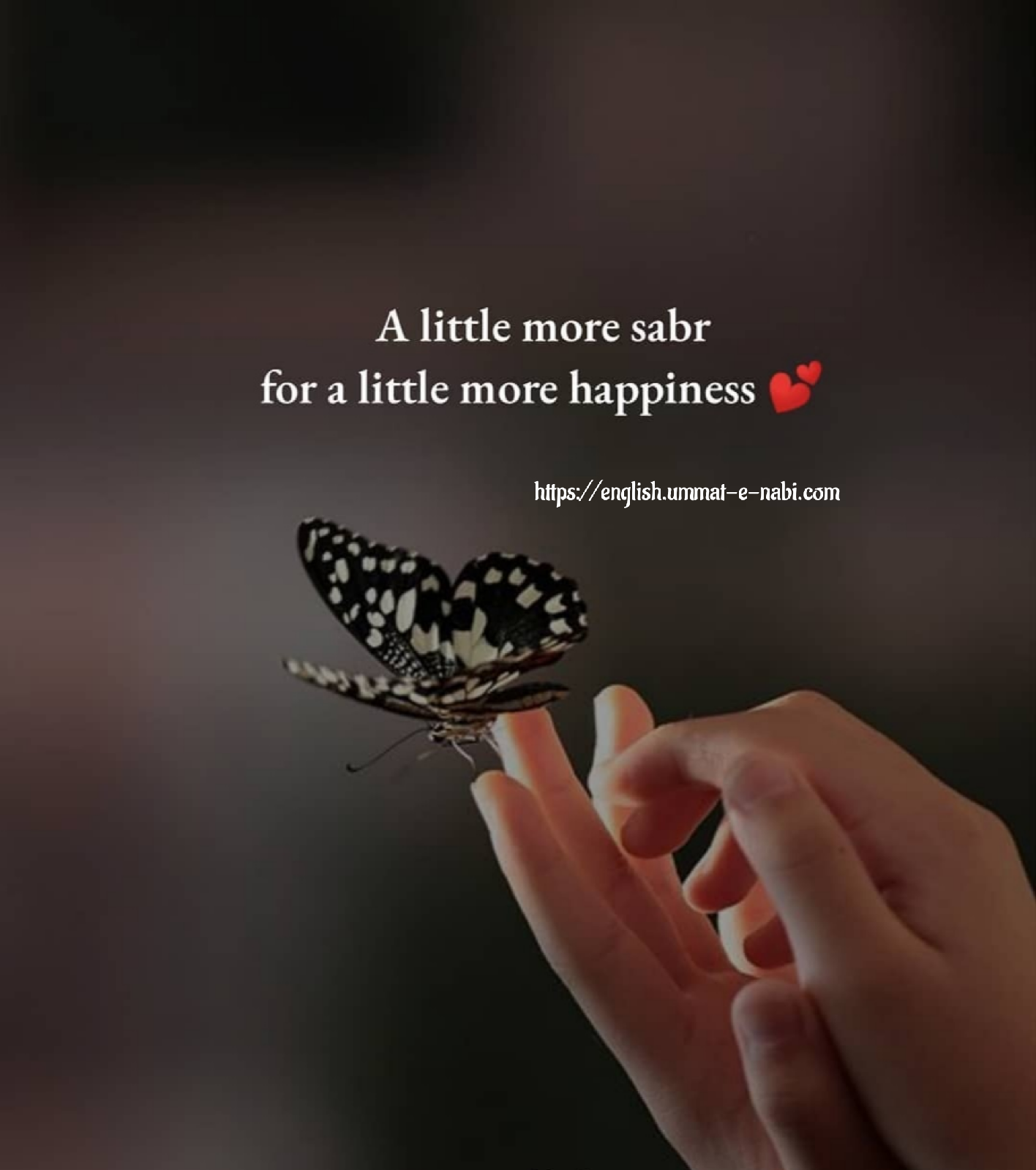 For More Happiness Islamic Qoutes Hd Images English Beautiful Quotes About Allah Islamic Inspirational Quotes Best Islamic Quotes