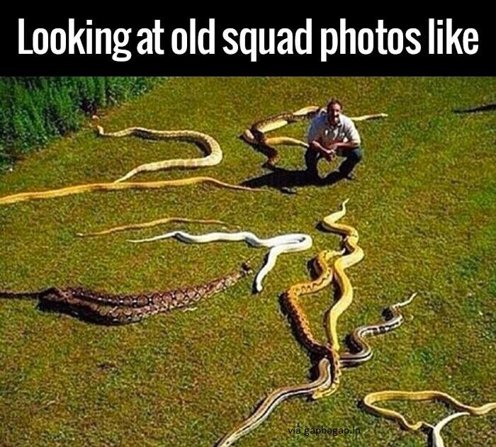 Funny Meme About A Man And His Snakes Thats Me Pinterest