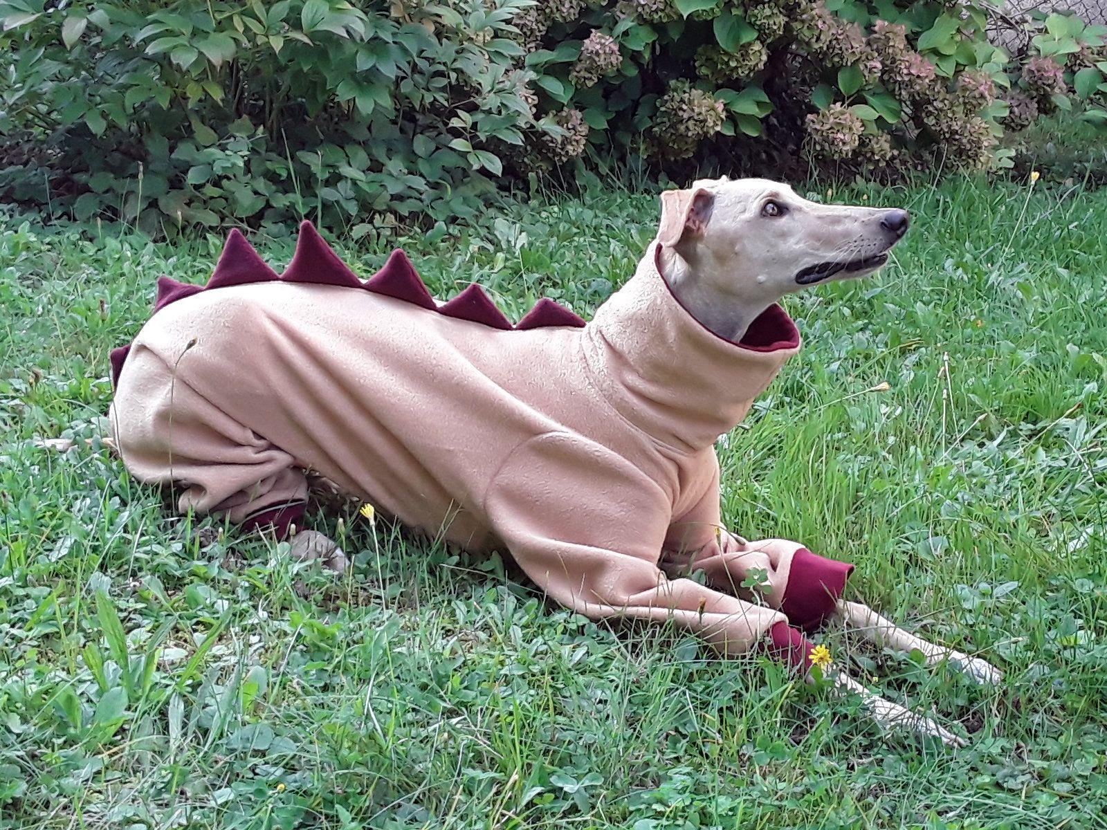 Greyhound Fleece Pajamas Galgo Pajamas Dinosaur Dog Pajamas