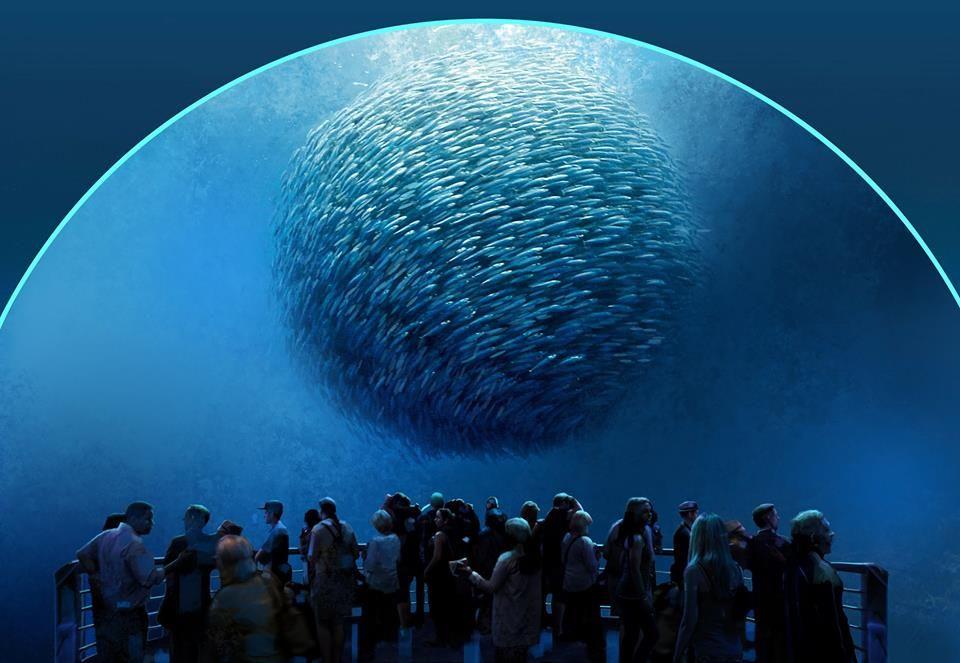 National Geographic Encounter: Ocean Odyssey New York