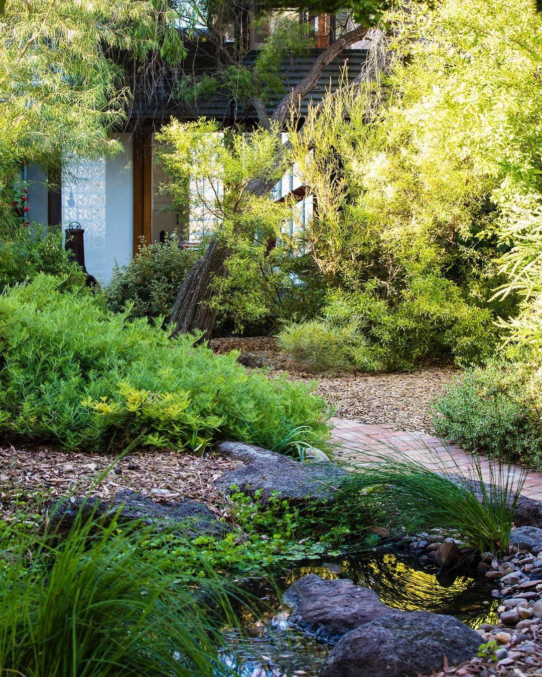 A bush sanctuary only 10 minute walk from Melbourne's CBD ...