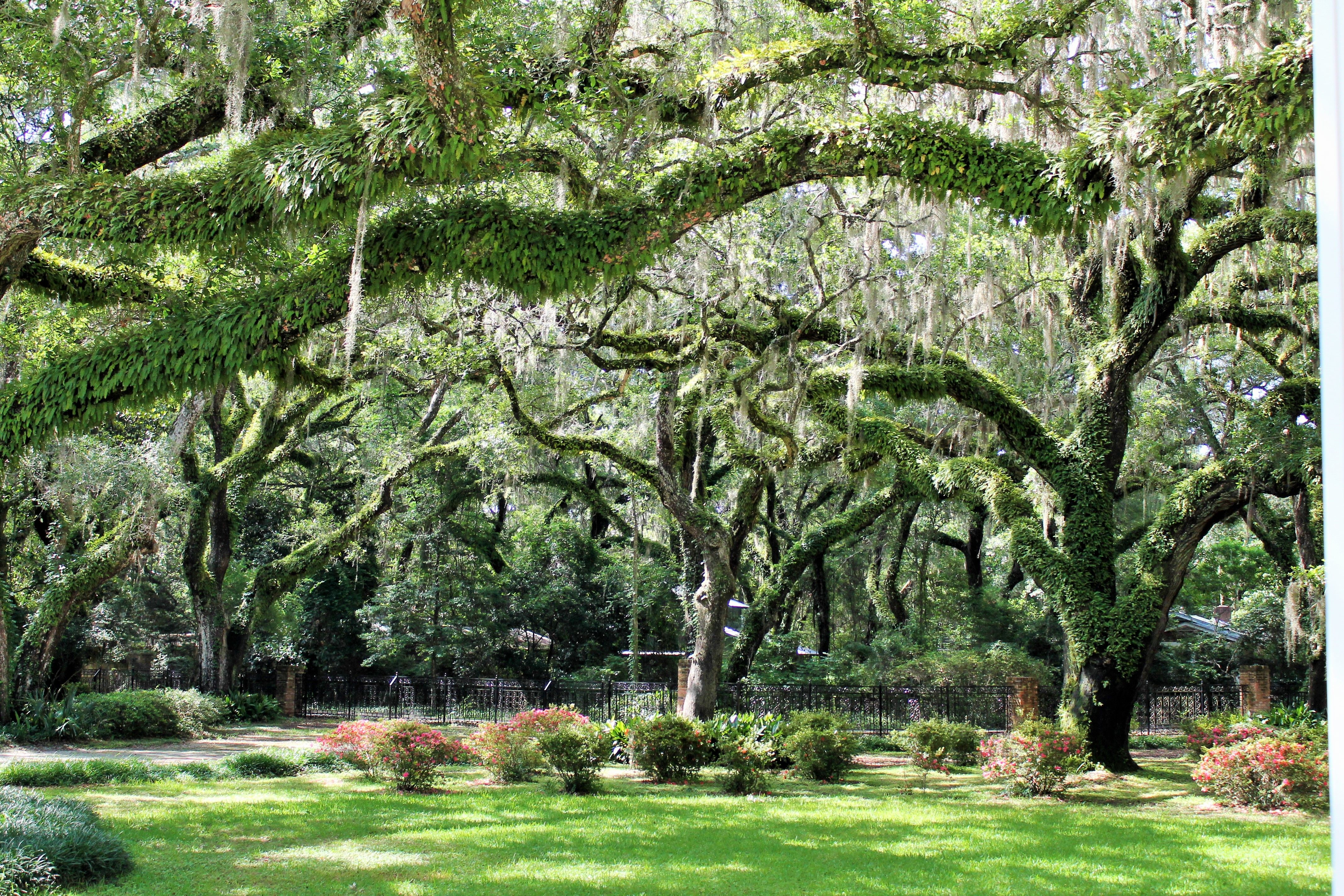 Eden Garden State Park in Florida State parks, Beautiful
