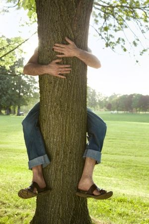 Science Proved Hugging Trees Is Good For Health | Trees to plant ...