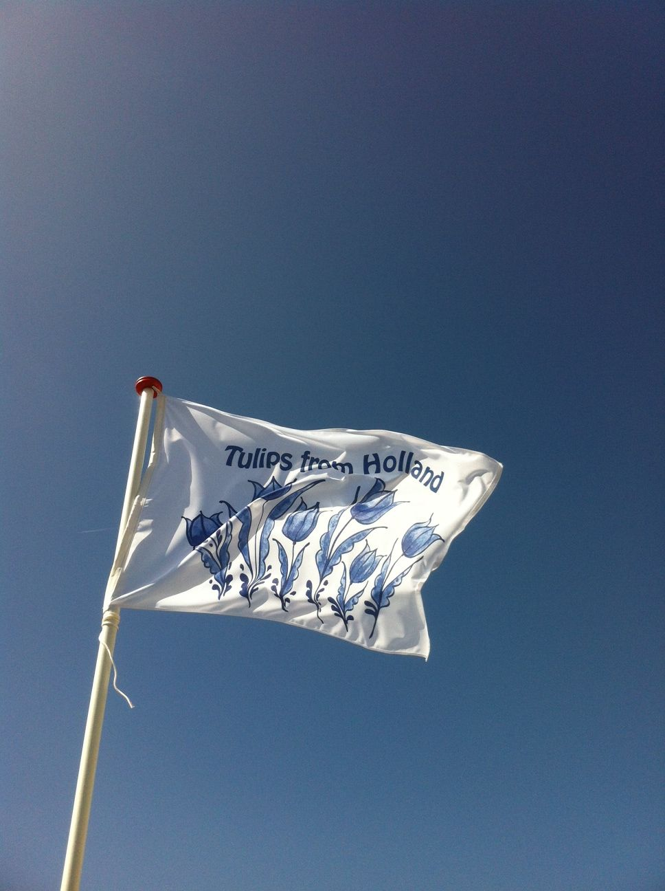 Een prachtige vlag met tulpenprint