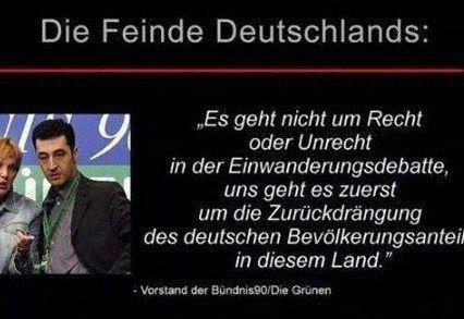Image result for grüne politiker gegen deutschland