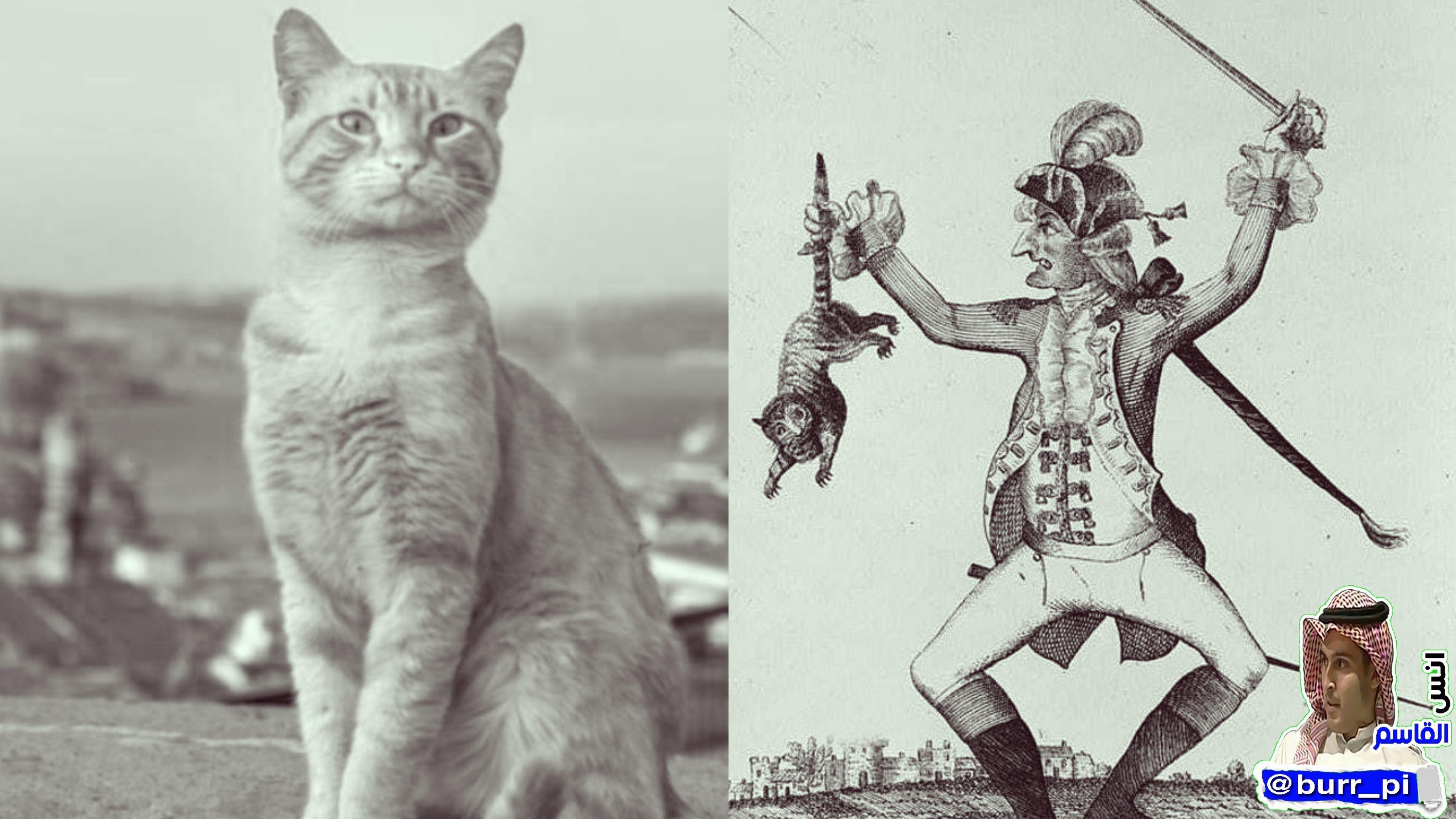 قديما أعلن البابا غريغوري إن الشيطان يتجسد في القطط وقام بقتل الملايين من القطط فانتشرت الفئران ونشرت الأمراض مما أدى إلى وفاة نحو ثلث Art Humanoid Sketch