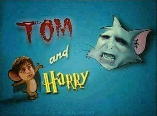 Lol! Tom & Harry