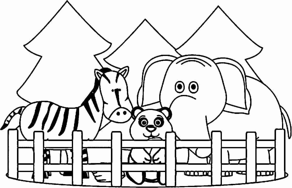 Zoo Animals Coloring Book Pdf Zoo Animal Coloring Pages Zoo