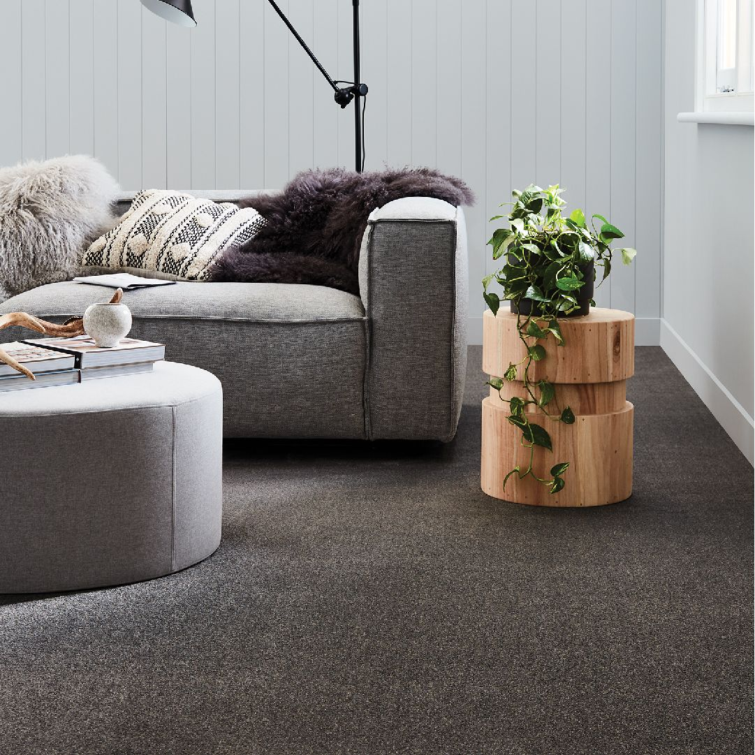A New Refreshing And Affordable Option To The Traditional Textured Loop We Introduce You To The Haven Tavish R With Images Choices Flooring Flooring Shops Flooring Store