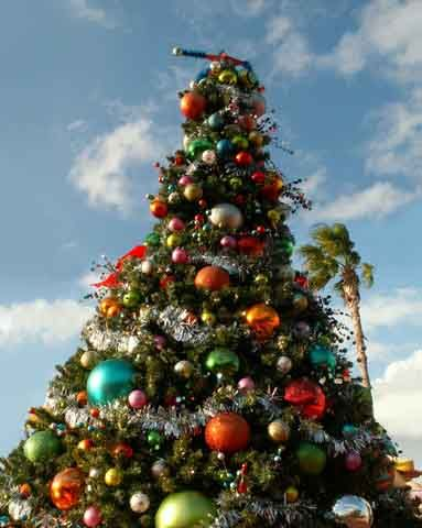 outdoor christmas trees - Outdoor Christmas Tree Decorations