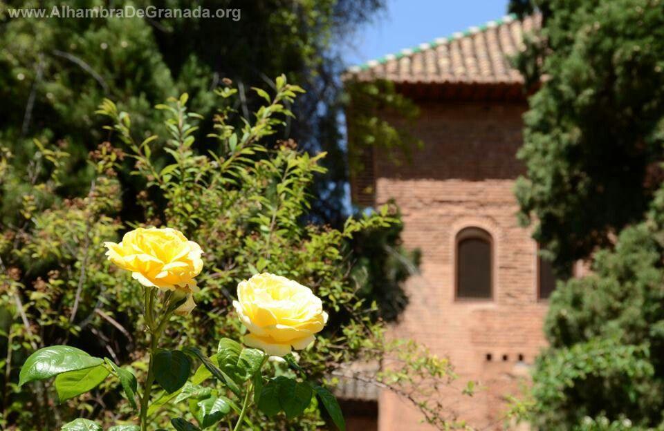 Torre de la Rauda, Alhambra, Granada
