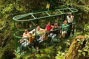 St. Lucia Rainforest Tour