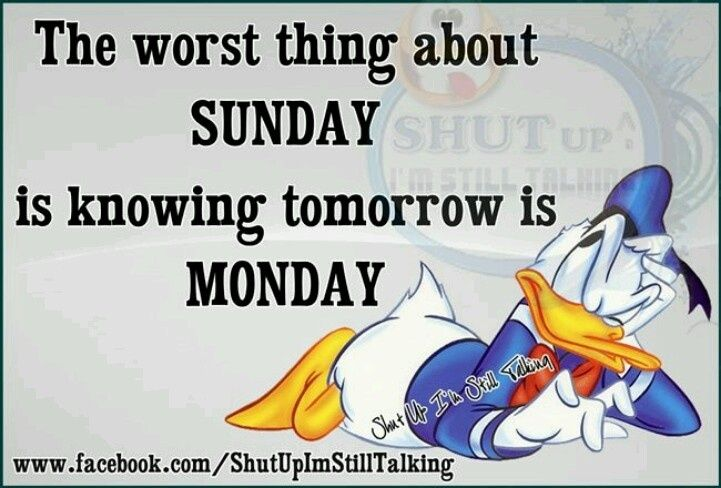 The Worst Thing About Sunday Good Night Quotes Tomorrow Is Monday Sunday Quotes Funny