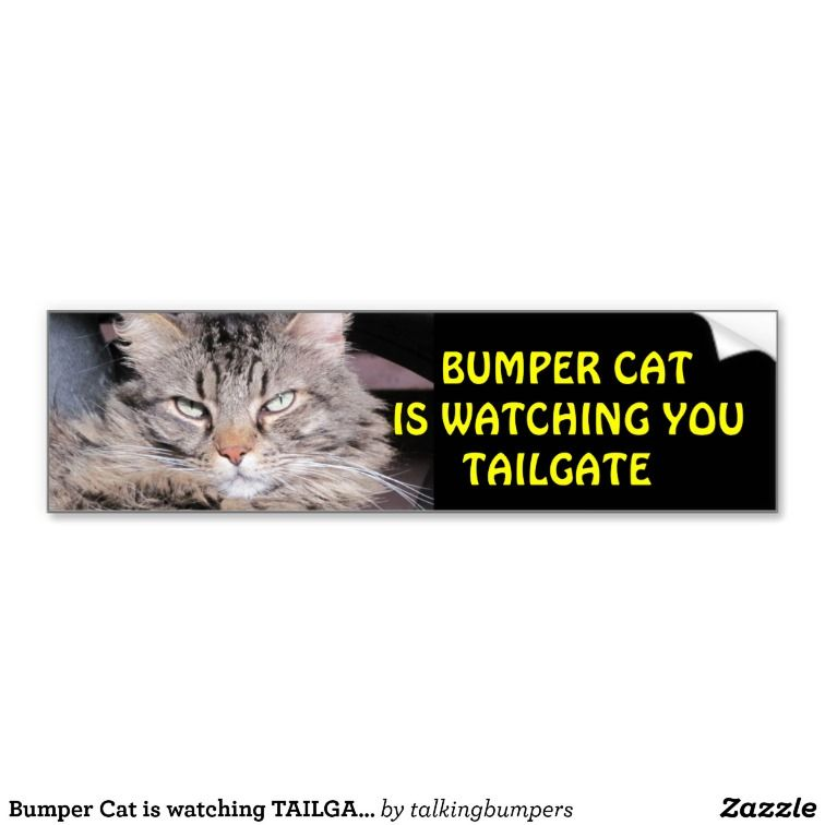 "Bumper Cat is watching TAILGATE 12 Bumper Stickers  This is the same cat ""Grumpy Angel"" as my best selling bumper sticker. A similar picture, Angel has a rather disapproving look. a fun way to remind drivers to not get too close."