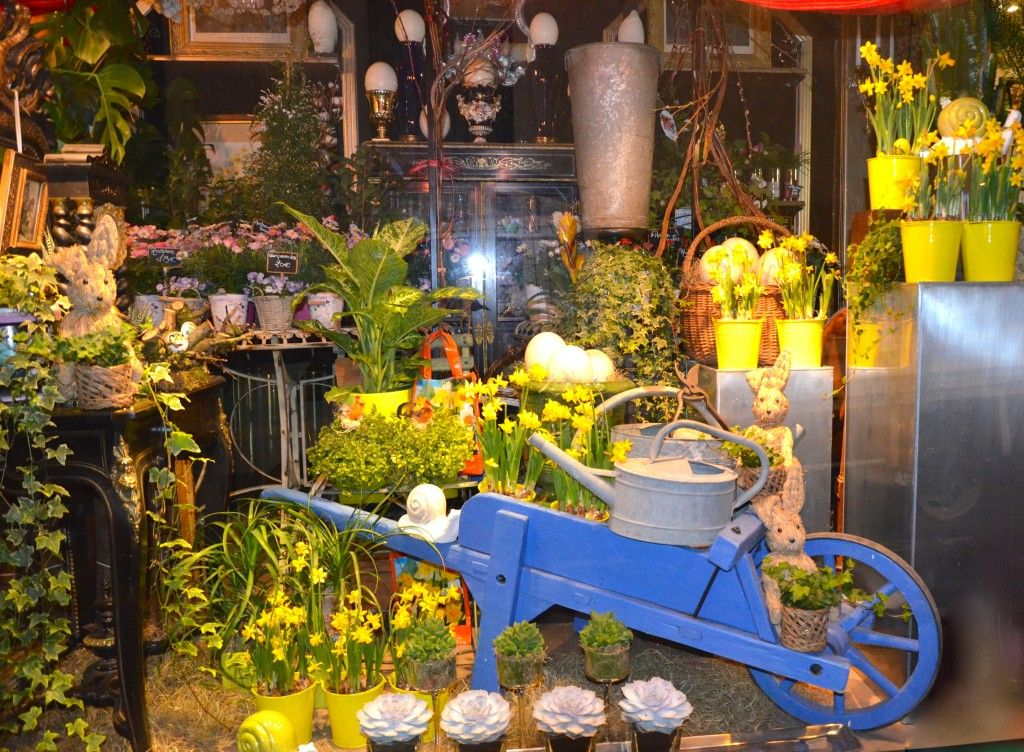 Photos de vitrines et boutique fleuriste montpellier - Magasin deco montpellier ...