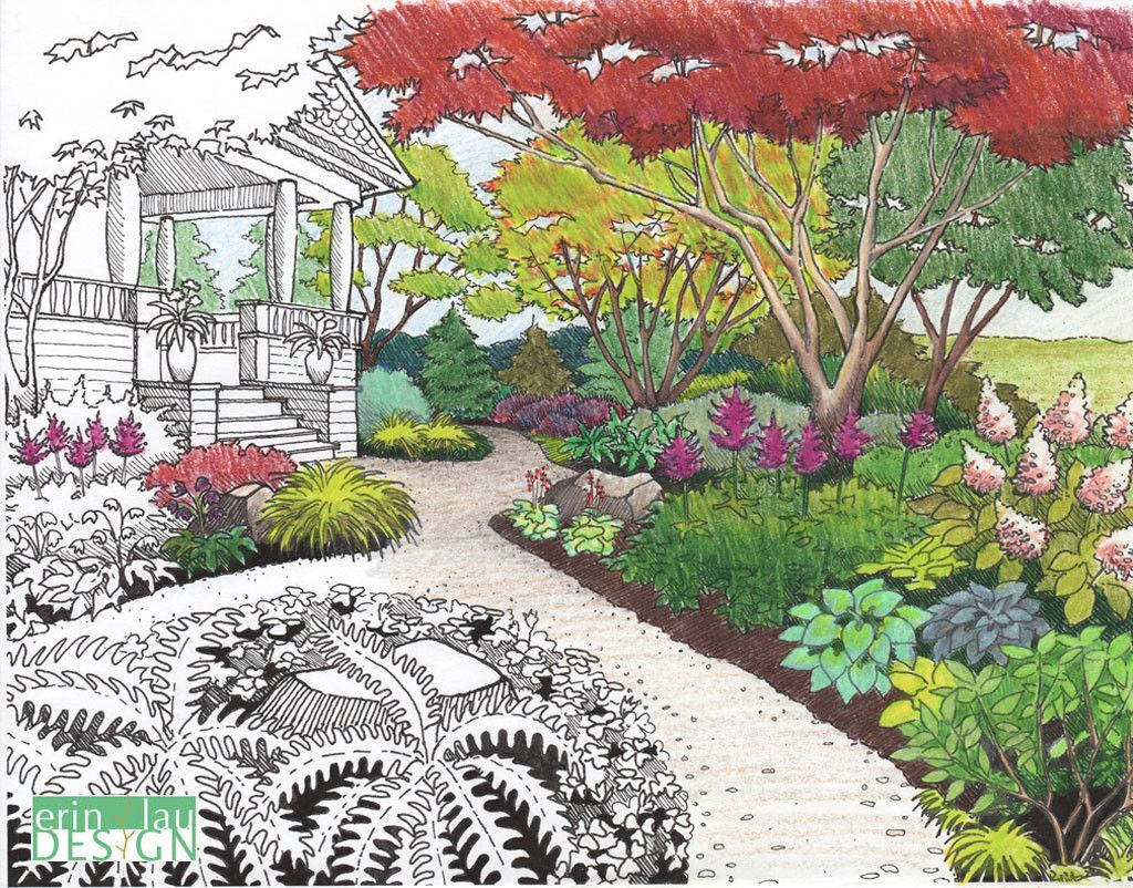 Flower garden sketch - Refined Garden Drawing Based On Earlier Sketch I M Working On Refining Some Of My Sketches From My Coloring Book To Either Be Used In A New Coloring Book