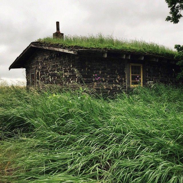 Prairie Dugout Sod House On The Prairie Sanborn Mn Building A