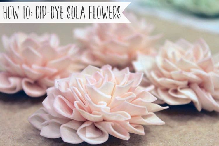 How To: Dip Dye Sola Flowers | Sola flowers, Dip dyed and Flowers
