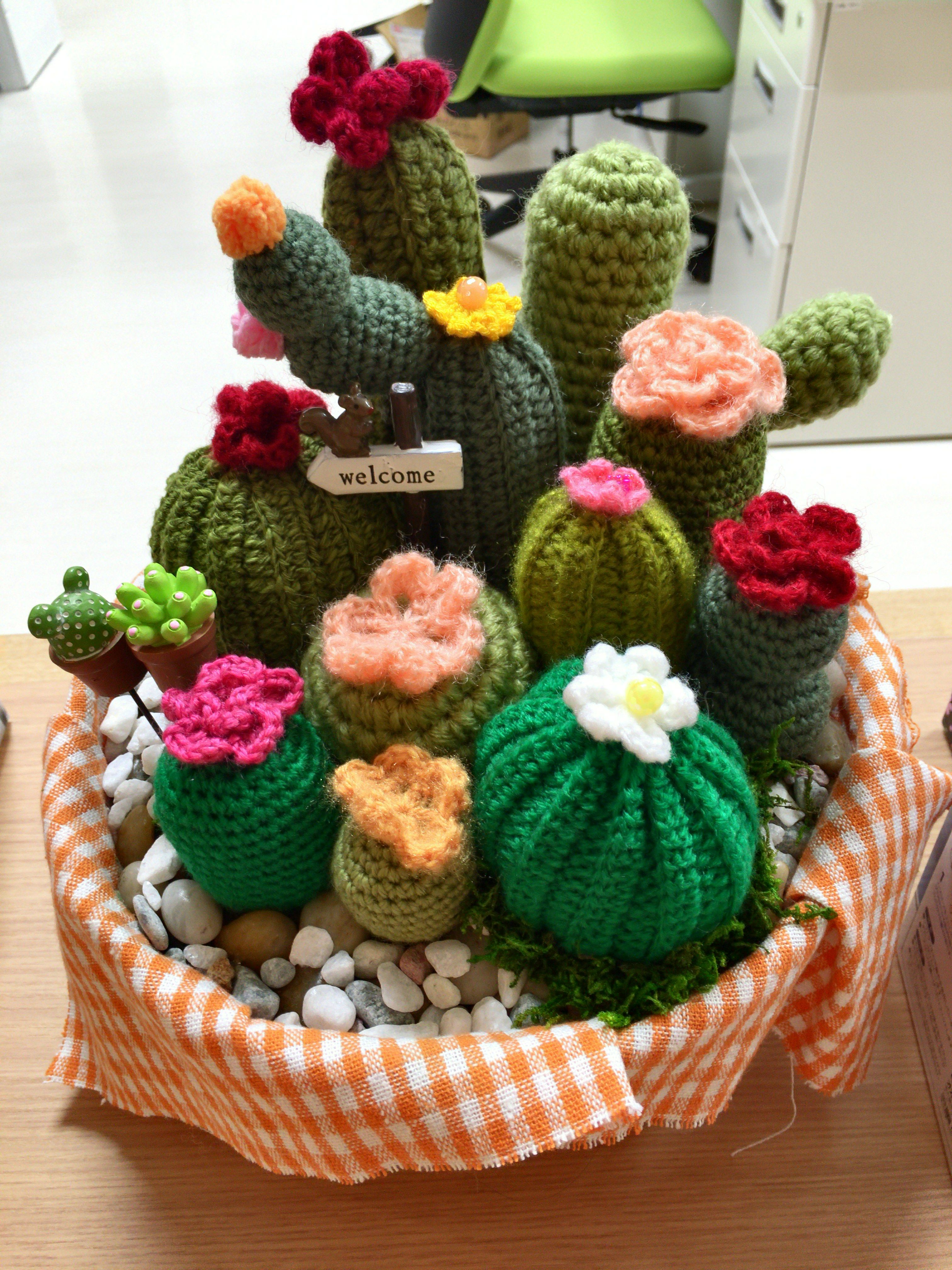 Learn how to make these adorable little crocheted amigurumi cactus ... | 4032x3024