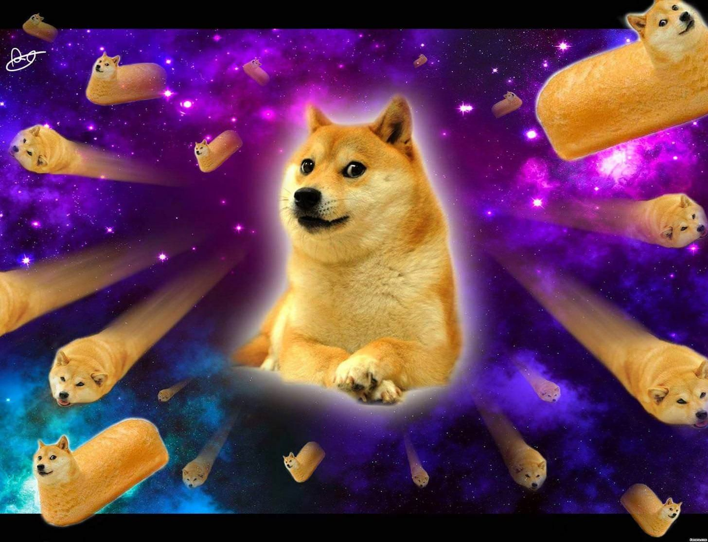 Best Wallpaper Ever For Pc Funny Post Doge Photo Dog Poster Doge