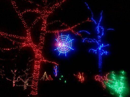 Spider Web Christmas Lights Lighting Fairy Light Ings