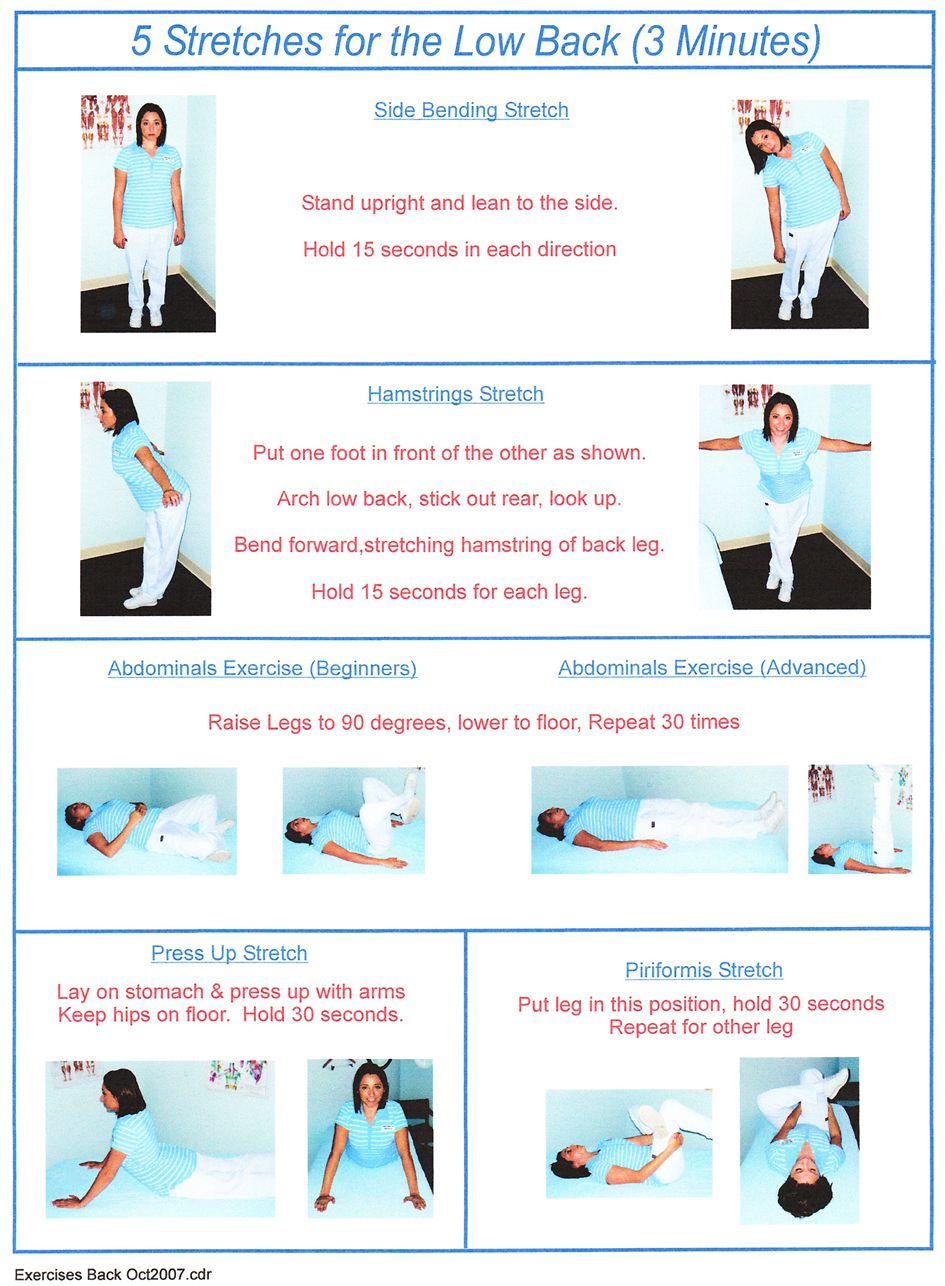 Lower Back Stretching Exercises Low Back Exercises Download Low
