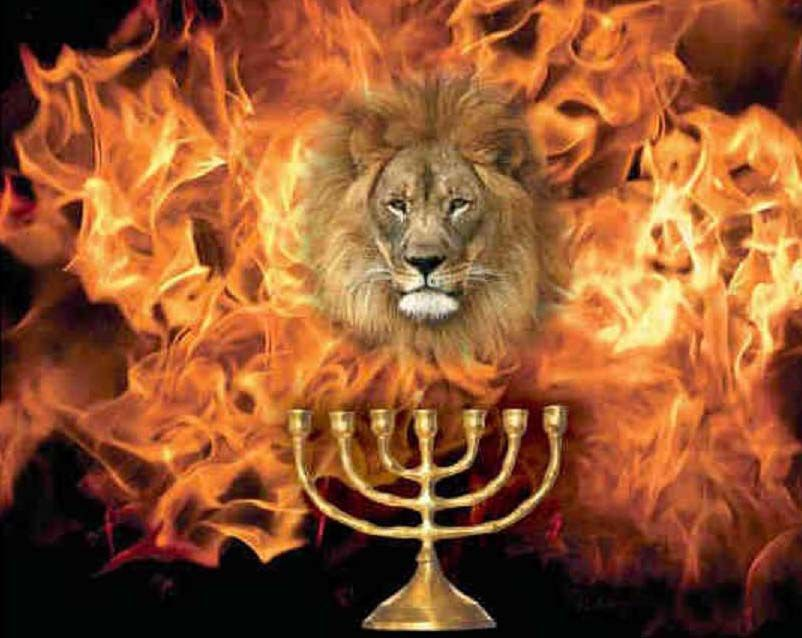 17 Lion of Judah roaring and flag Israel ideas | lion of judah, prophetic art,  lion