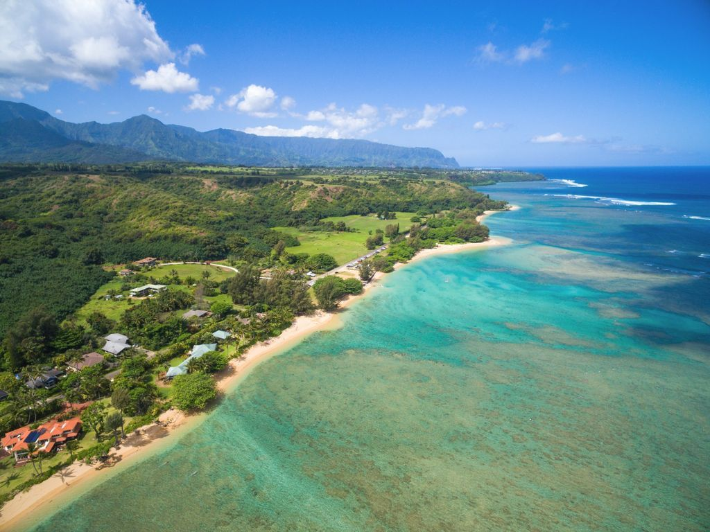 Charming Anini Beach Cottage Access Directly Across The Street Nestled Between A