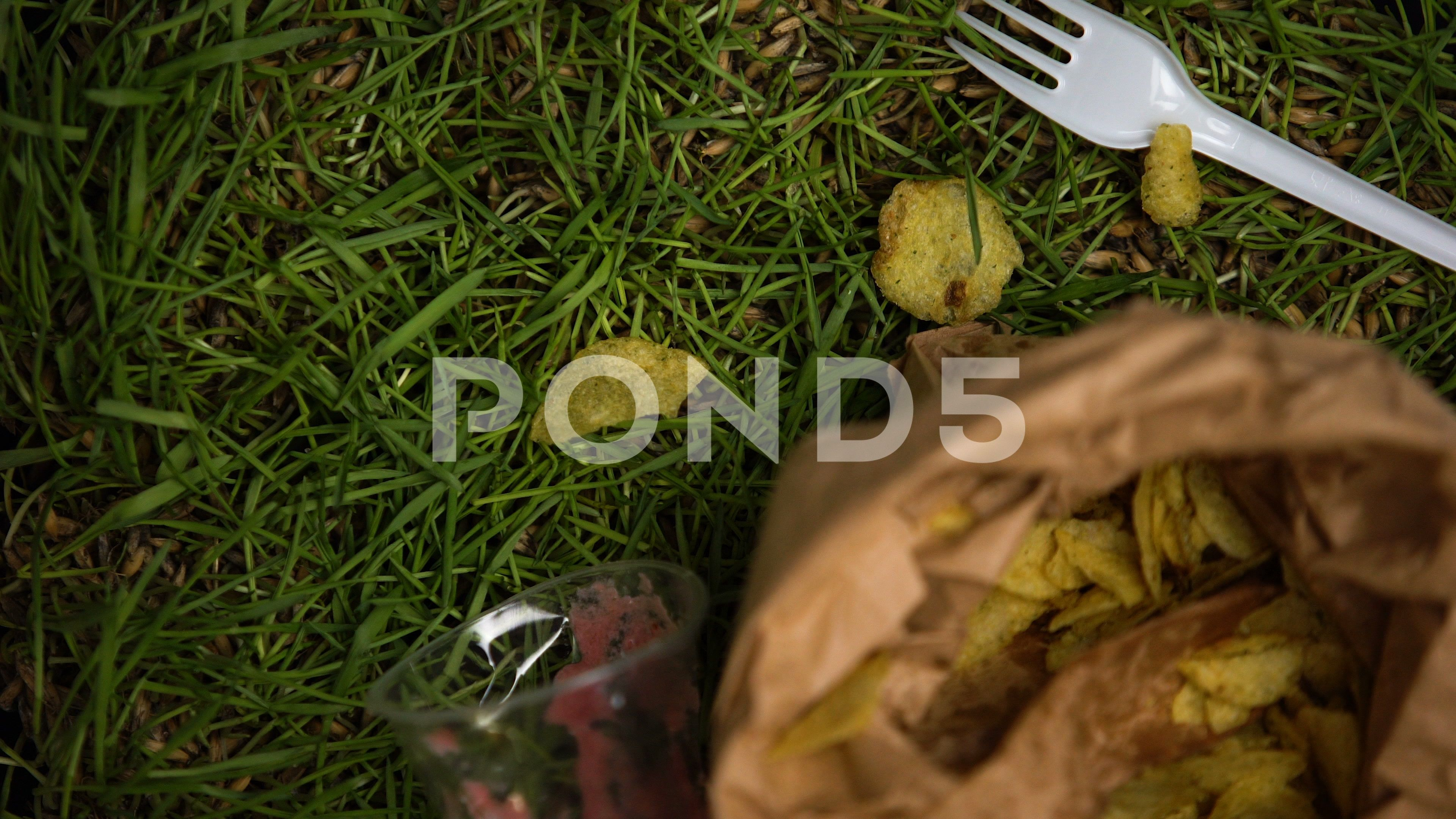 People hands throwing litter on grass after picnic nature neglect pollution Stock Footage littergrassthrowingPeople