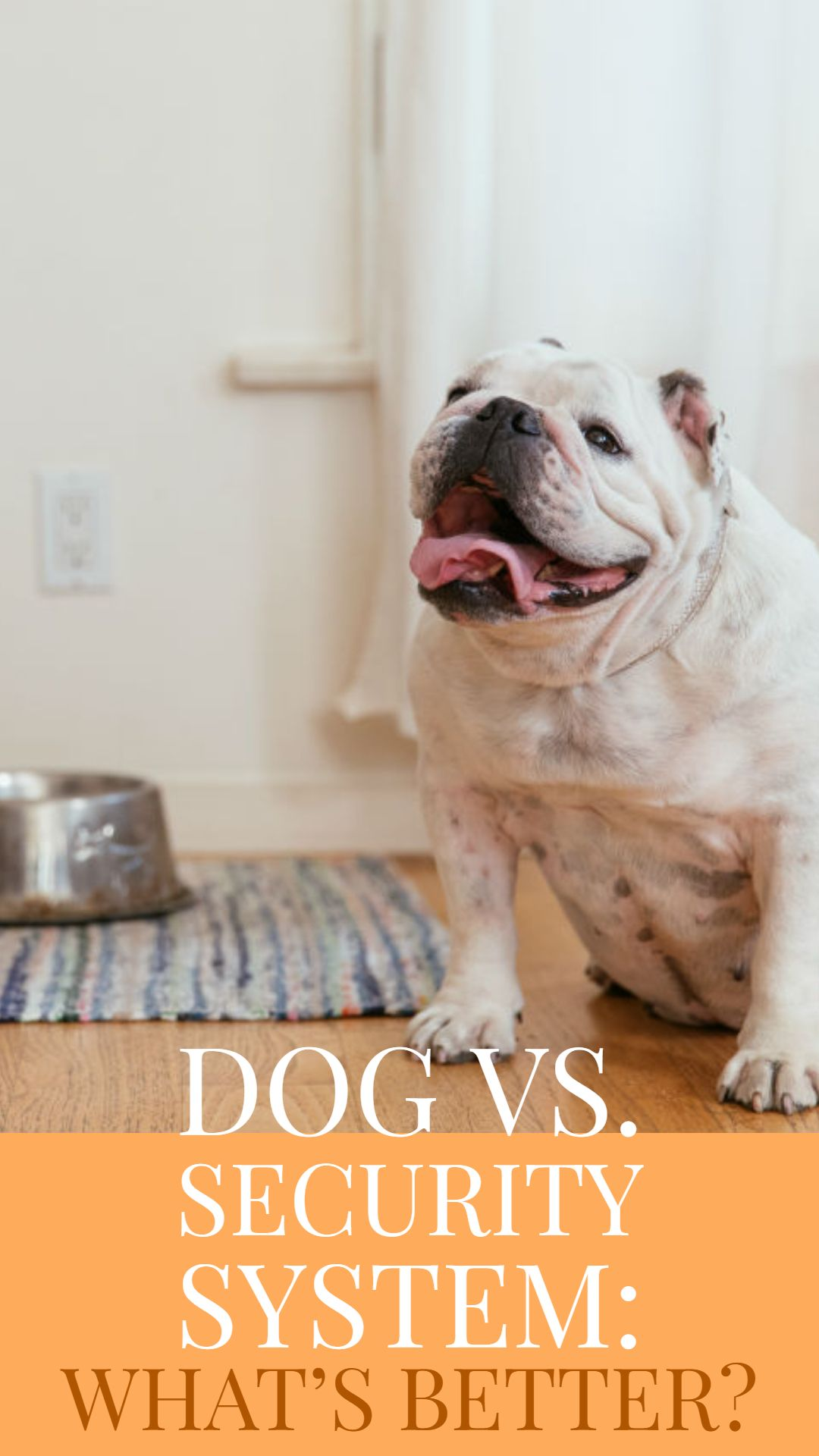 Is Your Dog Really A Guard Dog Most Of Us Have Dogs Because We Love Their Companionship Some People Also Want Their Pet To D Dogs What Kind Of Dog Guard